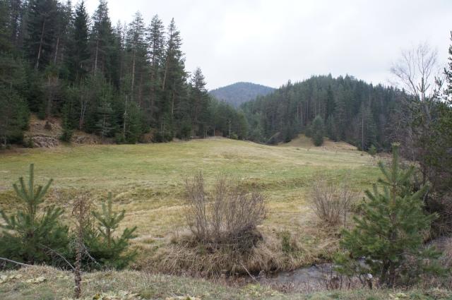 Местността Грънчарица. Ако планът за мината успее, тук ще бъдат натрупани 1.6 млн. т скална маса